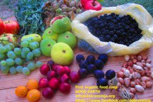 esenski plodovi