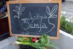 Best Macedonian Food Recipes